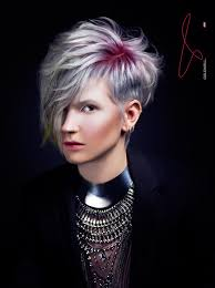 hair colourest of the year 2015 goldwell creative colorist color zoom traditional rebels 2015