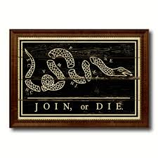 Vintage Home Interior Products by Us Join Or Die Snake Colonial Revolutionary War Military Flag