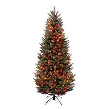 decoration ideas slim tree with green leaf and