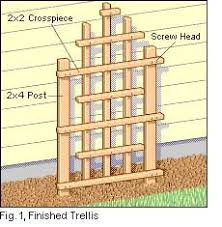 free trellis plans why pay 24 7 free access to free woodworking plans and projects