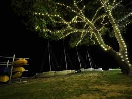 commercial outdoor led tree lights melbourne led outdoor