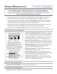 international resume sample vice president of sales director of