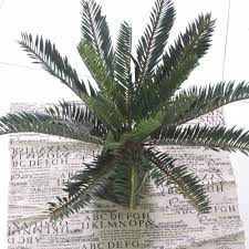 artificial phoenix coconut palm evergreen cycas fern plant tree