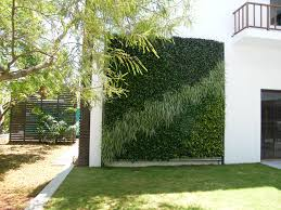 green wall vertical garden and plant nursery in delhi ncr