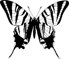 clipart simple butterfly