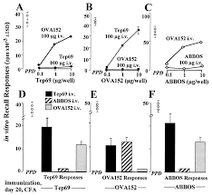 peptide dose mhc affinity and target self antigen expression are