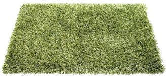 Outdoor Grass Rug Grass Rug Outdoor Enchanting Grass Outdoor Rug Outdoor Shag Rug
