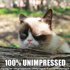 Unimpressed Meme - grumpy cat grumpy cat pinterest grumpy cat cat and humor