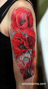 poppies cover up