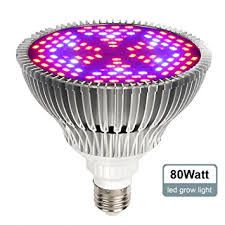 amazon com itimo full spectrum led grow light bulb plant growing
