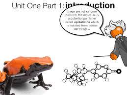unit one part 1 introduction