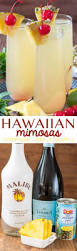 hawaiian mimosas crazy for crust