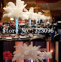 18 20 inch ostrich feather shop cheap 18 20 inch ostrich feather