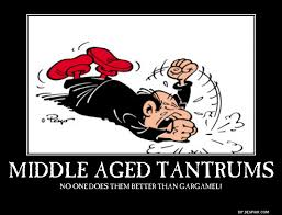 Tantrum Meme - middle aged tantrums demotivational posters know your meme