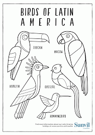 birds of latin america u20ac colouring page coloring home