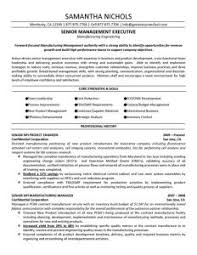 Executive Resumes Samples Free by Examples Of Resumes Resume Example Template Outline With Simple