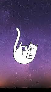 imagenes groseras de gatos wallpapers ripndip gato chido grosero mis wallpapers chidos