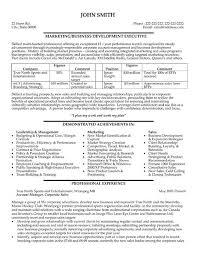 Executive Resume Samples by Business Development Sample Resume Haadyaooverbayresort Com