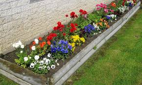 flower garden ideas flower garden ideas the beauty of colors