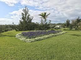 Bermuda Botanical Gardens Attraction Archive Page 3 Of 9 Greenbank Bermuda