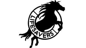 mustang horse drawing lifesavers wild horse rescue nbc southern california
