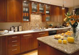 surprising shaker style kitchen cabinet doors modern interior in