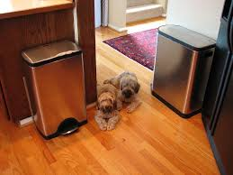 best dog proof trash cans u0026 tips for keeping your dog out of the