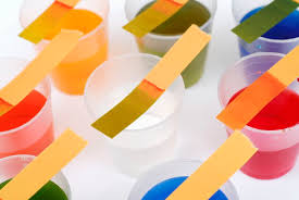 How To Make Litmus Paper At Home - litmus paper and the litmus test