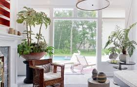 home interior plants 20 unforgettable indoor plant displays ideas