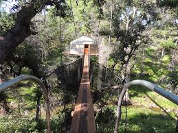 tree house near austin texas