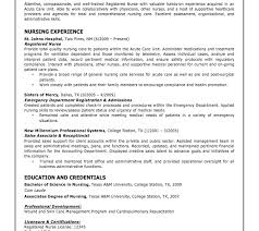 What A Resume Looks Like Best How Your Resume Should Look Contemporary Simple Resume