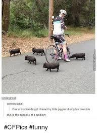 Funny Bike Memes - tenderghost awwwwww cute one of my friends got chased by little
