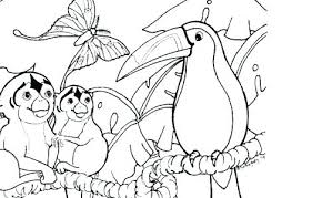 free coloring page of the rainforest rainforest coloring pages classy inspiration printable coloring