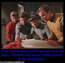 Red Shirt Star Trek Meme - captain i find the presence of the two addtional crew members on