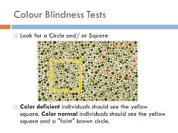 Legally Blind Test Human Perception Of Light Ppt Video Online Download