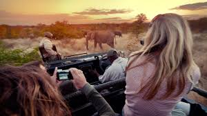 the best way to organize a lifetime of photos tips for taking photos on an african safari g adventures