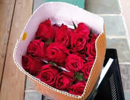 wholesale roses buying in bulk pollaro s flowers