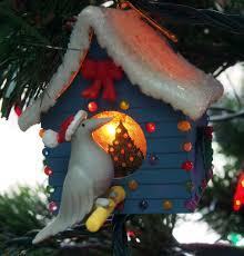 our christmas tree bird brains u0026 dog tales