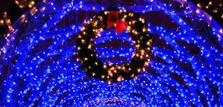 home depot led christmas lights elegant blue christmas lights or blue led lights outdoor 32 blue led