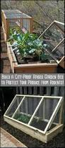 build a city proof garden to protect your produce from rodents