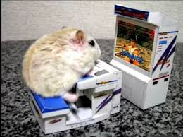 Mouse Memes - googled best gaming mouse was not disappointed googled it was
