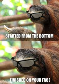 Sloth Meme Images - rape sloth image gallery know your meme