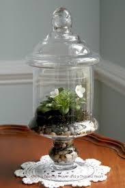 30 best indoor plants and gardens images on pinterest indoor