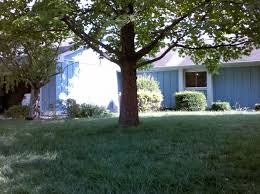 Land For Sale With Barn Pole Barn Indianapolis Real Estate Indianapolis In Homes For