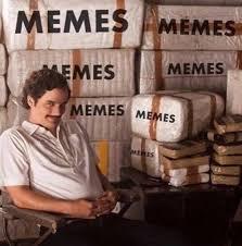 Gag Meme - professional meme trafficker funny dank memes gag