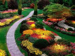 fascinating image of colorful zen garden decoration using light