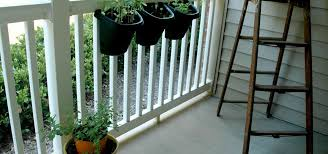 balcony herb garden honey be cooking