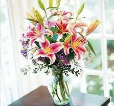 stargazer lilies stargazer lilies in vase kremp