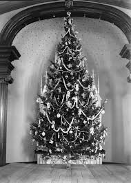 history of the christmas tree where did the christmas tree