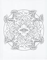 frog coloring pages colour me pinterest frogs and